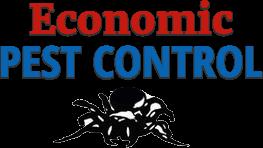 Pest Control Service in Wodonga, Wangaratta and Yarrawonga